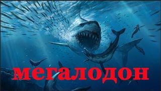 Доисторический Хищник  Мегалодон. Документальный фильм 2018