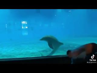 video_2021-01-19_20-45-24