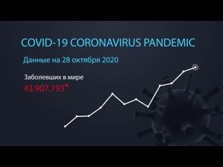 Коронавирус. Информация на 28 октября
