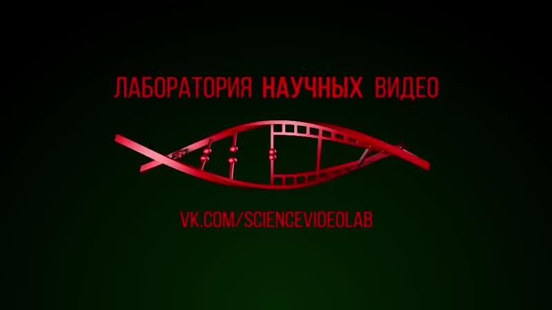 Соколов Александр. Мифы об эволюции человека. Древние великаны