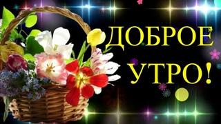 Доброе Утро! Пусть все будет хорошо! Красивое пожелание с Добрым Утром! Красивая видео открытка