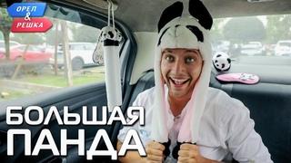 Большая панда (Китай). Орёл и Решка. Чудеса света (eng, rus sub)