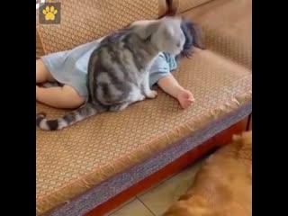 Не стоит бояться заводить животных, когда есть дети