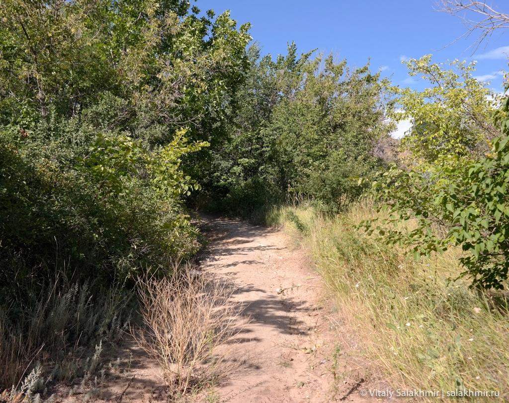 Дорога до парка победы в Саратове 2020