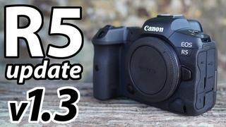 Canon EOS R5 FW v1.3 review: 1080 120p, C-Log 3, 8k RAW light