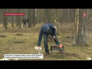 Правительство РФужесточило наказание занарушение карантина