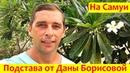 Влог 32: Дана Борисова на Самуи | Как нас обманывают клиенты | Пляжи Самуи обзор