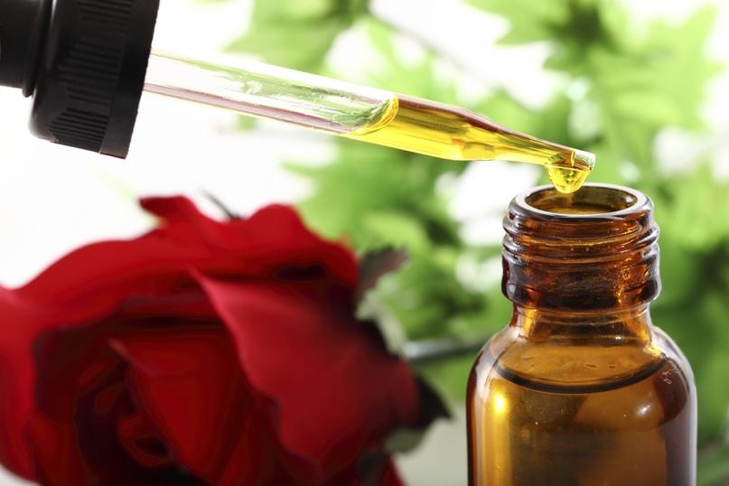 Розы полезны для Благодати, изображение №6