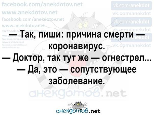 yt-vKGwwM64.jpg