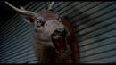 Комната смеха - Зловещие мертвецы 2