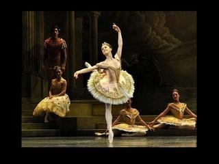 The Royal Ballet's 10 Prima Ballerinas of 2018
