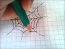 урок №3 рисуем паучка и паутину