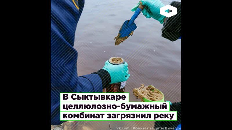 В Сыктывкаре целлюлозно бумажный комбинат загрязнил реку I ROMB