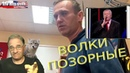 Волки позорные Новости 7-40, 30.3.2021