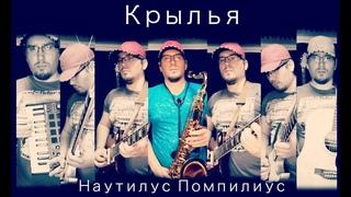 Наутилус Помпилиус - Крылья. Кавер (гитара, саксофон)