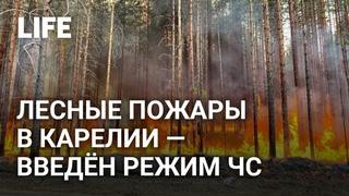 В Карелии ввели режим ЧС из-за природных пожаров