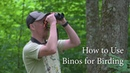 Binos for Birding - How, Why, and What (Birding Series 1)(Nikon Monarch)