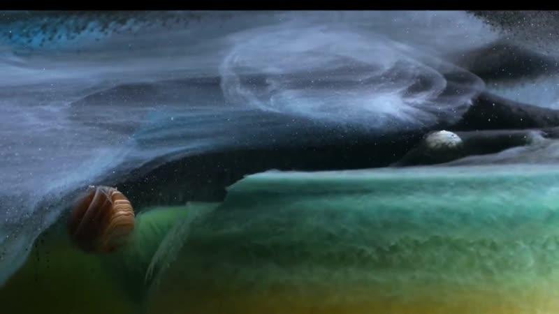 творча композиція групи 2-15 Родиського професійного ліцею від ілюзій