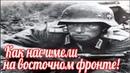 Война глазами немецких солдат Я писал жене что русские забрали у нас все! Людвиг Фриг СС Тотенкопф
