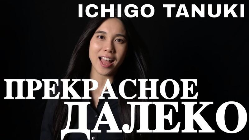 Ichigo Tanuki - Прекрасное Далеко