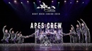 [3rd Place] Apes Crew | Body Rock Jr 2019 [@VIBRVNCY Front Row 4K]