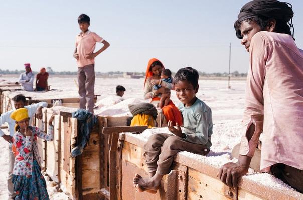 Один день сборщиков соли в Индии