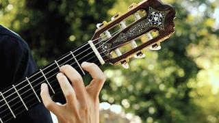 One Summer's Day - Spirited Away   guitar cover   Inochi No Namae いのちの名前