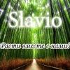 Slavio Центр интенсивного обучения (г. Иркутск)