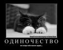 Фотоальбом Алексея Гусева