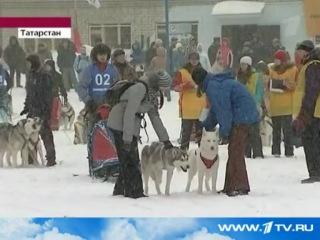 Репортаж с гонки Алтын Чана 2011 новости 1канал