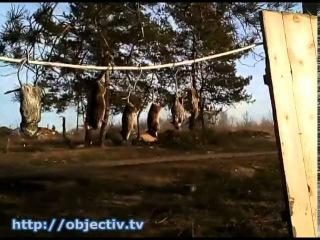 Бойцы Нацгвардии - о военных буднях в Крымском
