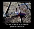 Алексей Шамардин фотография #39