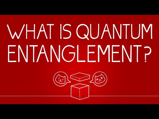What can Schrödinger's cat teach us about quantum mechanics Josh Samani