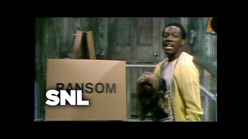 Mister Robinson's Neighborhood Dog Walk Saturday Night Live