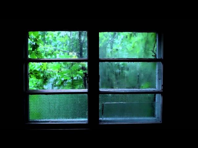 Rain Sound and Thunder 2 Hours Sleep Meditation Sound
