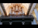 Pirates of the Caribbean Davy Jones's theme cover church organ by Grissini Project