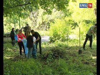 Добровольцы очищали от мусора Петровский парк в Ельце