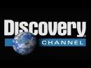 Discovery. Атлас тела. Секс и организм / Sex discovery. fnkfc ntkf. ctrc b jhufybpv / sex