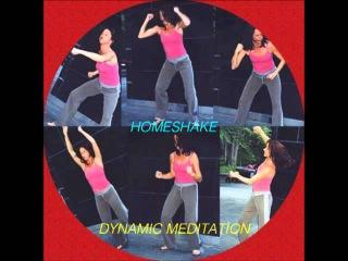 Homeshake - Dynamic Meditation