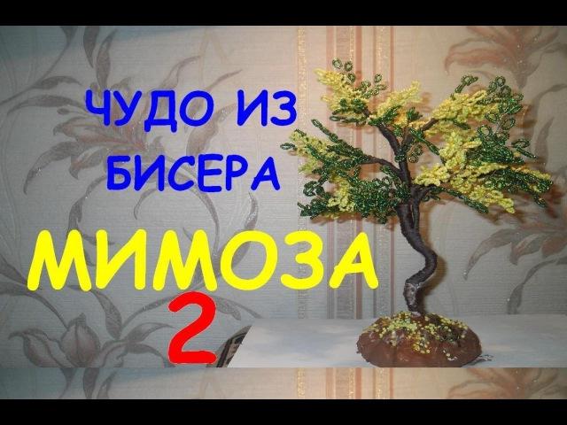 Бисероплетение для начинающих Мимоза 2 часть Мастер клас
