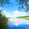 Зеленёвский пруд