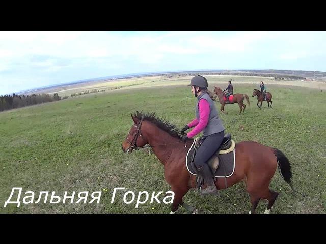 Время путешествий! / Поездка на лошадях на Дальнюю Горку
