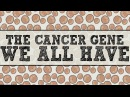 The cancer gene we all have - Michael Windelspecht