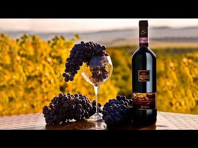 Русская винодельня в Америке. Russian Chappel Hill Winery, Columbus, NC.
