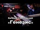 Евгений Соколовский Генезис Yamaha CVP 709GP