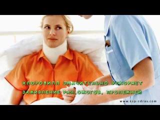 Хлорофилл жидкий от NSP .