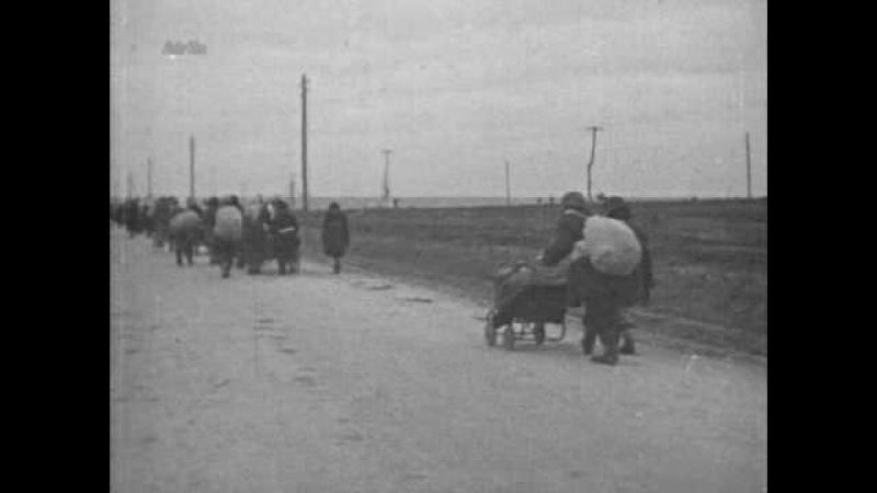 С камерой по восточному фронту 3 часть из 3 1939 1944 XviD DVDRip alf62