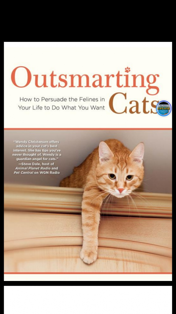 Outsmarting Cats How to Persuade