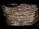 Художественное литье из бронзы