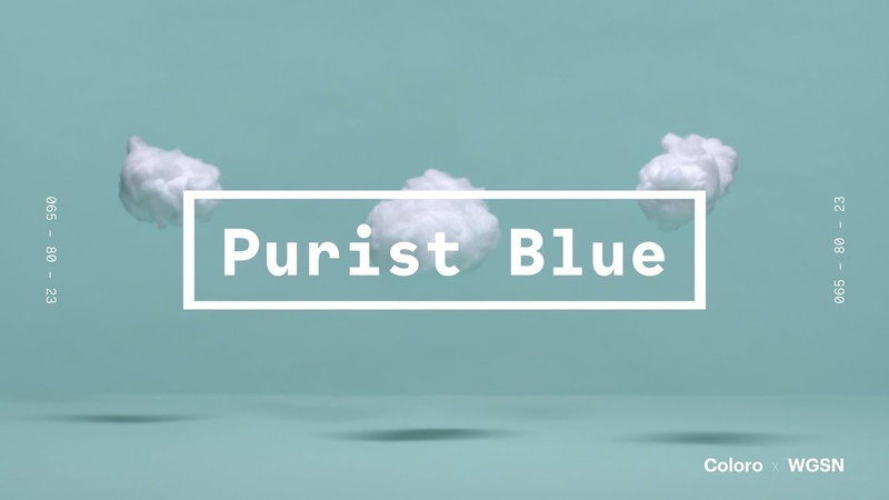 Coloro x WGSN key colors 2020: Purist Blue